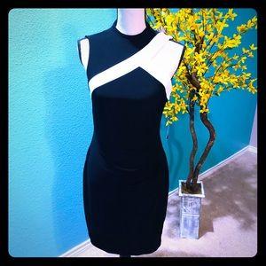 NWT Ralph Lauren bodycon Jersey Dress 4